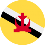 brunei_flag_icon