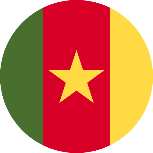 cameroon_flag_icon