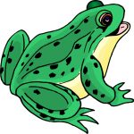 Green Frog Clipart