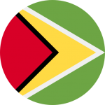 guyana_flag_icon