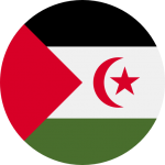 western sahara flag icon