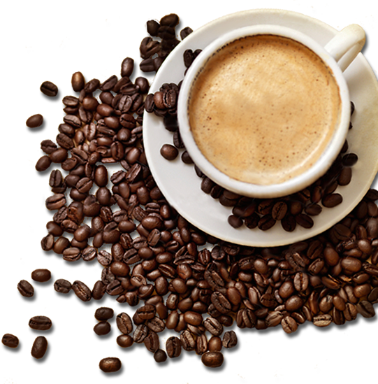 coffee bean images PNG